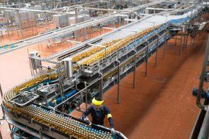 nhà máy bia corona extra