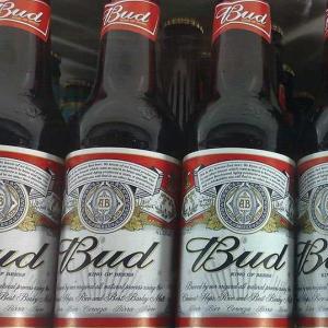 hương vị đặc biệt của bia budweiser